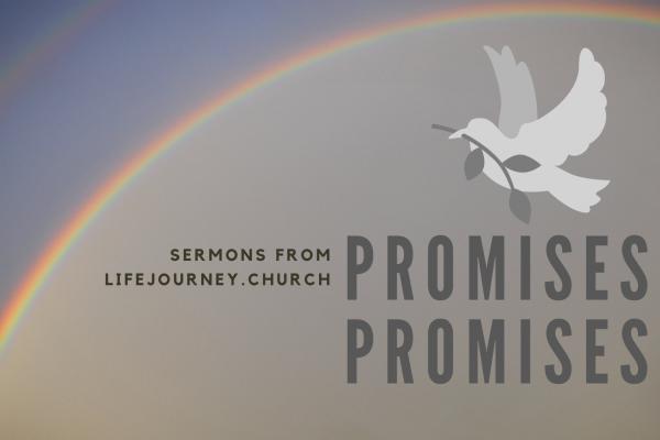 Promies Promises